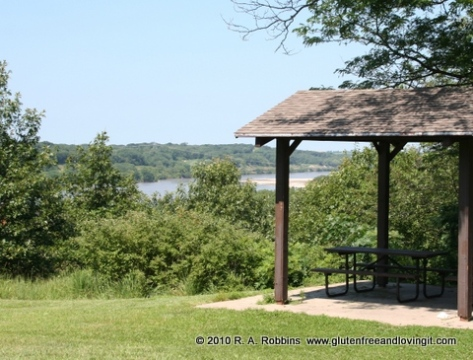 Picnic shelter overlooking Platte River  Copyright R.A. Robbins 2012 Image copyright 2011 by R.O & R.A. Robbins