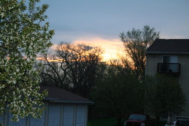 may sunrise 2 resized