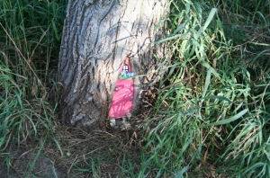 Pink Faerie House Copyright 2013 by R.A. Robbins