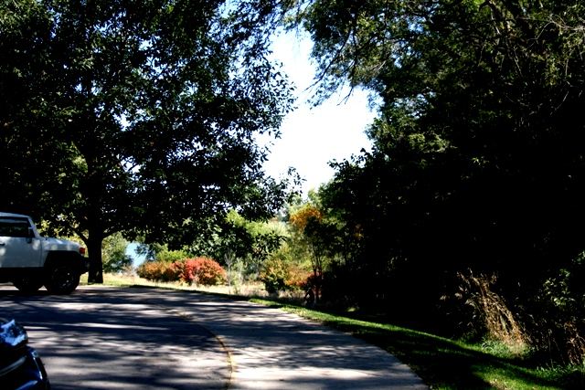 Fall at Chalco #35 Copyright 2013 by R.A. Robbins