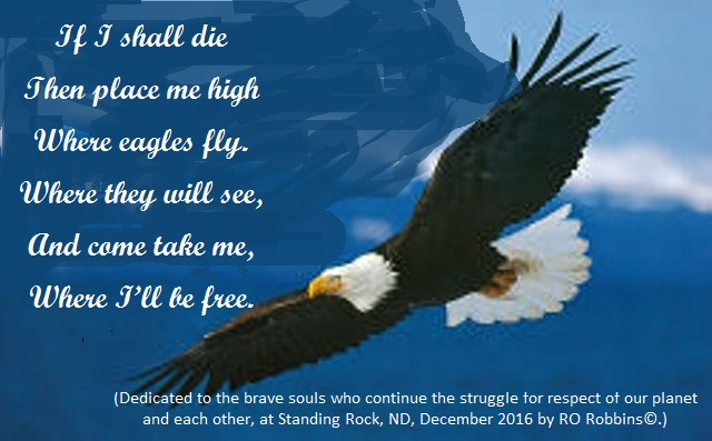 where-eagles-fly-pic-jpg