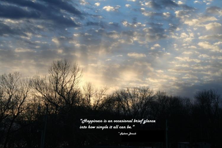 BLOG POSTS - Robert Brault - new-morning-sun-photos-036